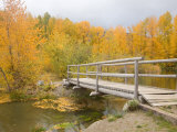 Autumn Color at Easton Ponds with Trail  Wenatchee National Forest  Washington  USA