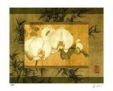 Bamboo & Orchids II