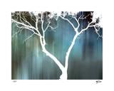 Zen Forest I