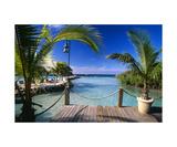 Lagoon View Aruba