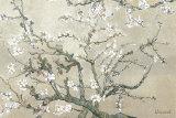 Branches d'amandier en fleurs, Saint-Rémy, vers1890 - tonalité brun beige Reproduction d'art par Vincent Van Gogh