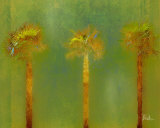 Three Palms II