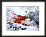 Kamigamo Shrine in Snow  Kyoto  Japan