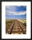 A view of the Indian Pacific Railroad crossing the Nullarbor Plain
