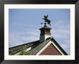 A Flying Pig Weather Vane on a Roof Top