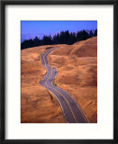 Winding Road at Mount Tamalpais  California  USA