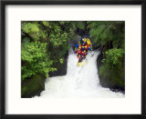 Raft in Tutea's Falls  Okere River  New Zealand