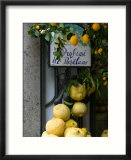 Lemons  Positano  Amalfi Coast  Campania  Italy