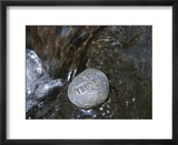 Rock with the Word Trust in Water