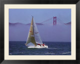 Sailboat  San Francisco  CA