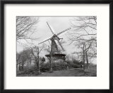 Windmill in park  Alkmaar  Netherlands