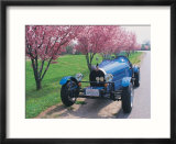Bugatti racecar and cherry blossoms