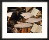 Orchestra timpanist