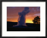 Old Faithful Geyser at Sunset  Yellowstone National Park  USA