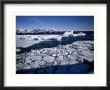 Coastal Scenery  Antarctic Peninsula  Antarctica  Polar Regions