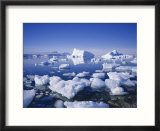 Icebergs and Brash Ice  Antarctica  Polar Regions