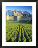 Chillon Chateau  Switzerland
