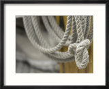 Coil of Gray Rope