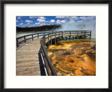 Boardwalk and Bacteria Mat  Black Sand Basin in Yellowstone  Wyoming  USA