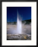 Plume Geyser in the Old Faithful Area  Yellowstone National Park  Wyoming  USA