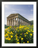 Roman-Style Ruins in Spanish Countryside with Wildflowers