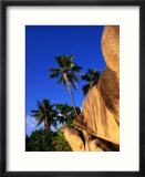Granite Formations and Palm Trees  Seychelles