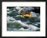 White-Water Rafting in Snake River  Jackson Hole  Jackson  Wyoming