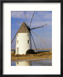 Old Windmill at Mar Menor  Near Cartagena  Murcia  Spain