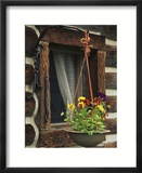 Flower Basket Outside Window of Log Cabin  Fort Boonesborough  Kentucky  USA