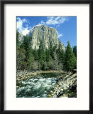 El Capitan & Merced River  Yosemite National Park  USA