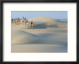Men Traveling on Camelback Across Sand Dunes  Jaisalmer  Rajasthan  India