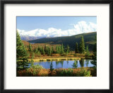 Snow-Capped Mount Mckinley and Beaver Pond  Alaska