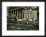 Horses Pull a Cart Load of Beer Kegs Past St Isaacs Cathedral