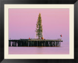 Sunset framing a Christmas tree on Stearns Wharf