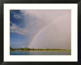 At the end of the rainbow is Rongelap Atoll