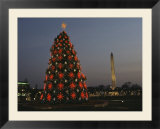 The National Christmas tree with the Washington Monument in back