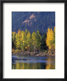 Autumn Color on the Methow River  Washington  USA