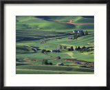 Farms and Rolling Hills of the Palouse  Steptoe Butte State Park  Washington  USA