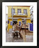 Donkey and Yellow Building  Hydra  Greece