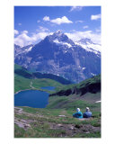 Swiss Alps 2