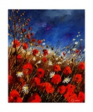 Red Poppies Against A Stormy Sky