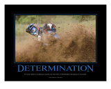 Determination
