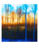 Winter Sunset Through Woods On Lake Siljan