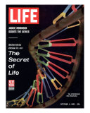 Partial DNA Helix Model  Advances in Gene Research  October 4  1963