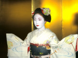 Close-up of Geisha Girl in Gold  Kyoto  Japan