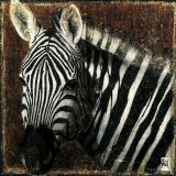 Zebra Portrait