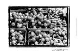 Farmer's Market V