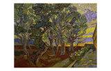 The Garden of Saint Paul's Hospital Giclée par Vincent Van Gogh