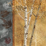 Birch Tree in Autumn I