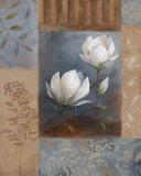 Magnolia Spring II